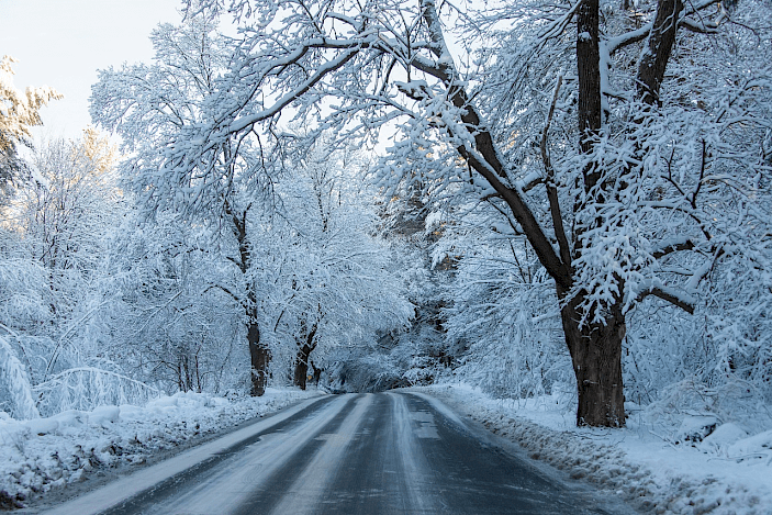 The dazzling aftermath of a snow storm in Massachusetts